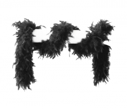 Federboa schwarz 180 cm