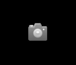 Blume mit Wasserspritze gelb